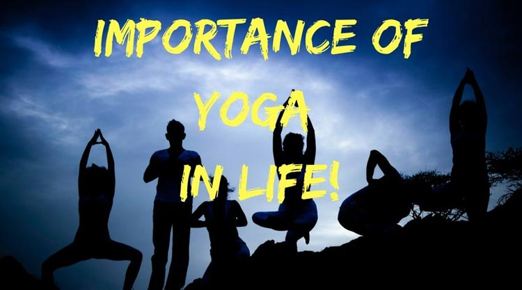 Importance of Yoga in Daily Life